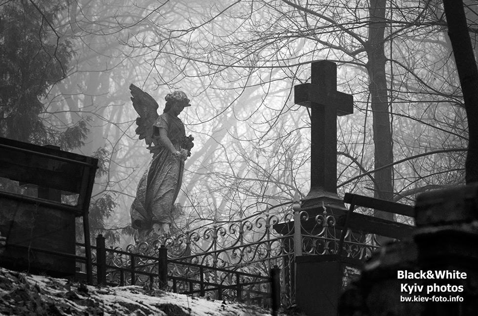Ангел Вдовы Де Векки