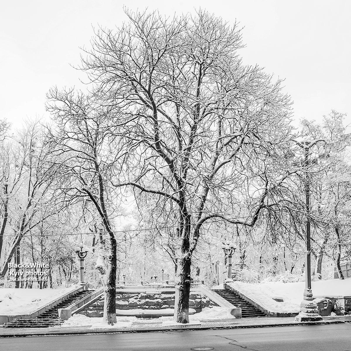 Прогулка зимним городским садом