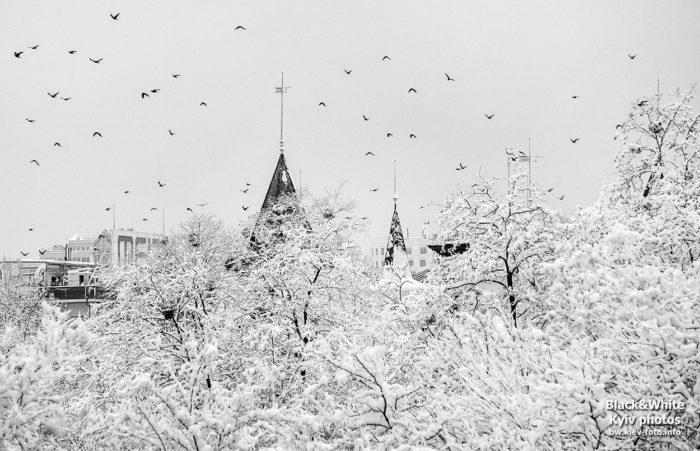 Прогулка зимним Крещатым Яром