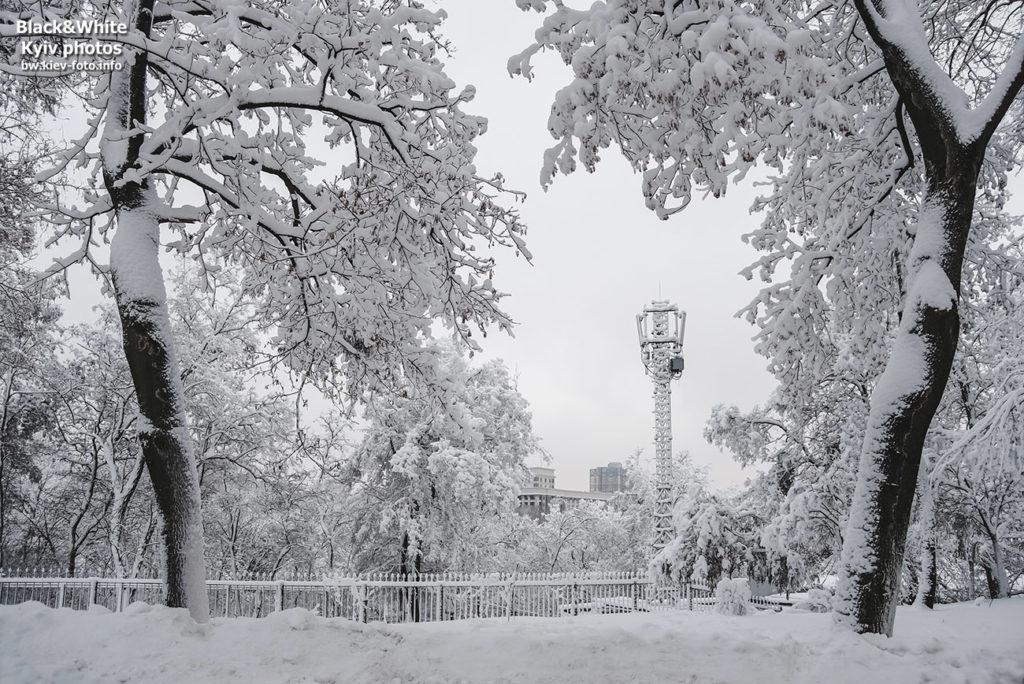 Прогулка зимним Крещатым парком